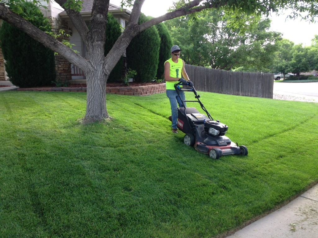 Lawn Service-Grand Prairie TX Landscape Designs & Outdoor Living Areas-We offer Landscape Design, Outdoor Patios & Pergolas, Outdoor Living Spaces, Stonescapes, Residential & Commercial Landscaping, Irrigation Installation & Repairs, Drainage Systems, Landscape Lighting, Outdoor Living Spaces, Tree Service, Lawn Service, and more.